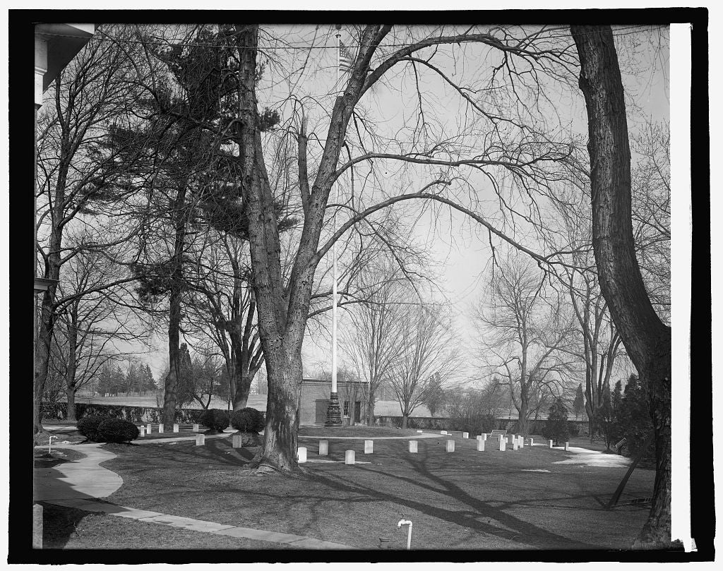 8 x 10 Reprinted Old Photo of Battle cemetery 1918 National Photo Co  45a