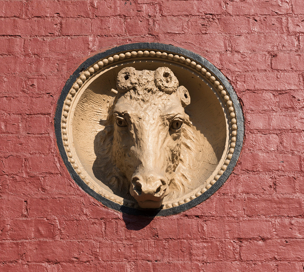 18 x 24 Photograph reprinted on fine art canvas  of Horsehead detail on an outside wall of Centre Market in Wheeling West Virginia. Built in 1853 the downtown marketplace is not only the oldest market house in Wheeling but a