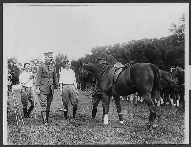 8 x 10 Reprinted Old Photo of Inspecting the polo ponies before a game at Washington, D.C. General Peyton C. March, Chief of Staff, U.S.A. sho [no date recorded on caption card] National Photo Co  56a