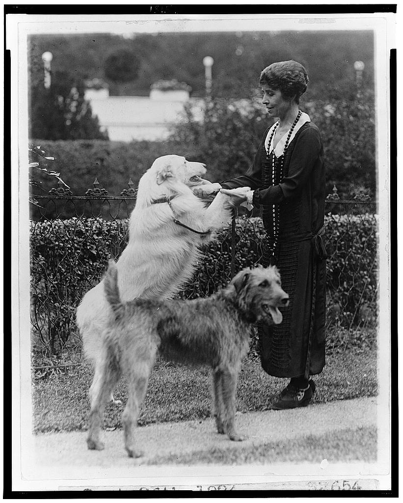 8 x 10 Reprinted Old Photo of [Grace Coolidge with two dogs, holding the front paws of one] 1924 National Photo Co  40a