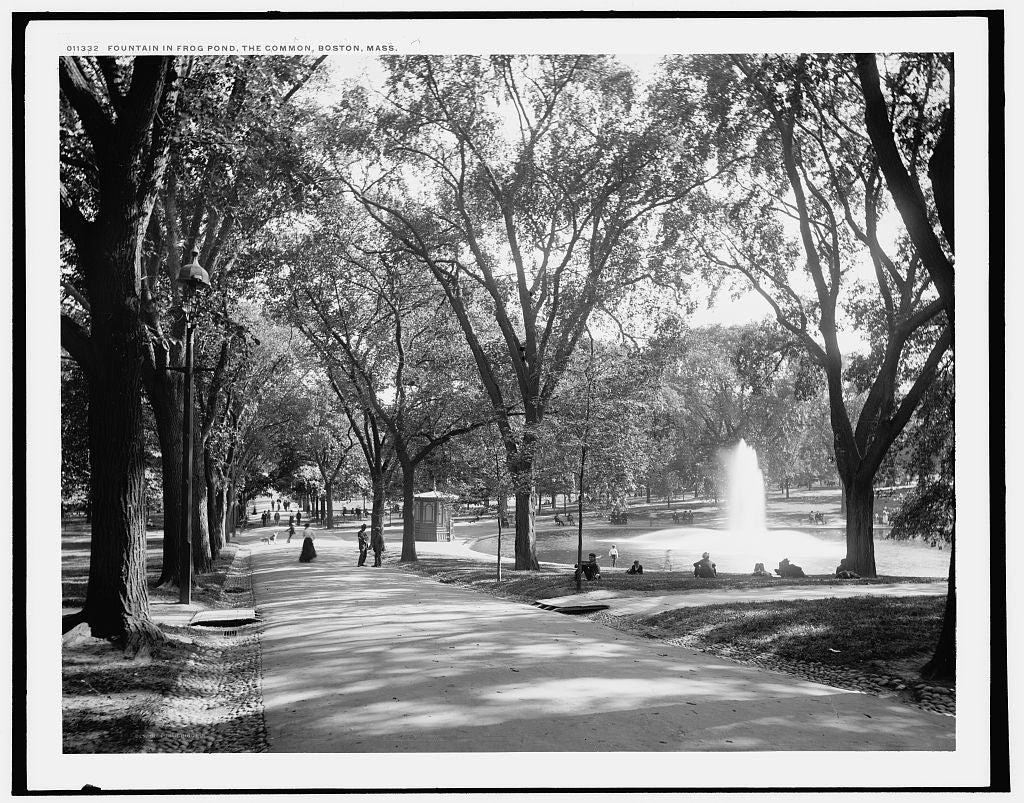 16 x 20 Gallery Wrapped Frame Art Canvas Print of Fountain in frog pond the Common Boston Mass  1890 Detriot Publishing co.  64a