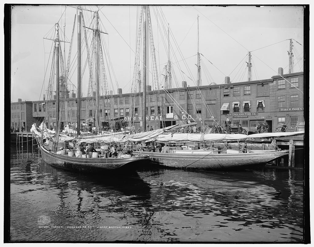 "16 x 20 Gallery Wrapped Frame Art Canvas Print of Fisher schooners at ""T"" wharf Boston Mass  1904 Detriot Publishing co.  44a"