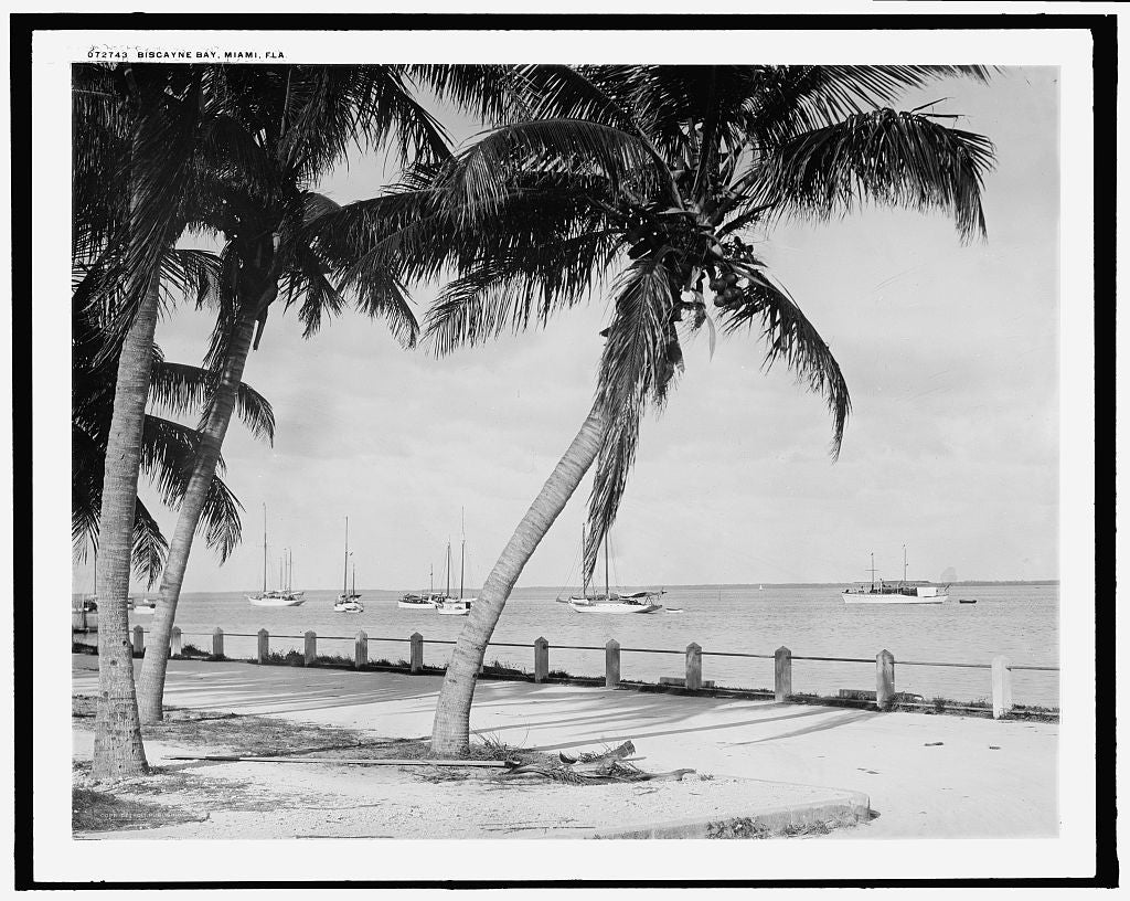 16 x 20 Gallery Wrapped Frame Art Canvas Print of Biscayne Bay Miami Fla  1915 Detriot Publishing co.  97a