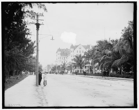 16 x 20 Gallery Wrapped Frame Art Canvas Print of  12th Street looking west Miami Fla  1900 Detriot Publishing co.  17a