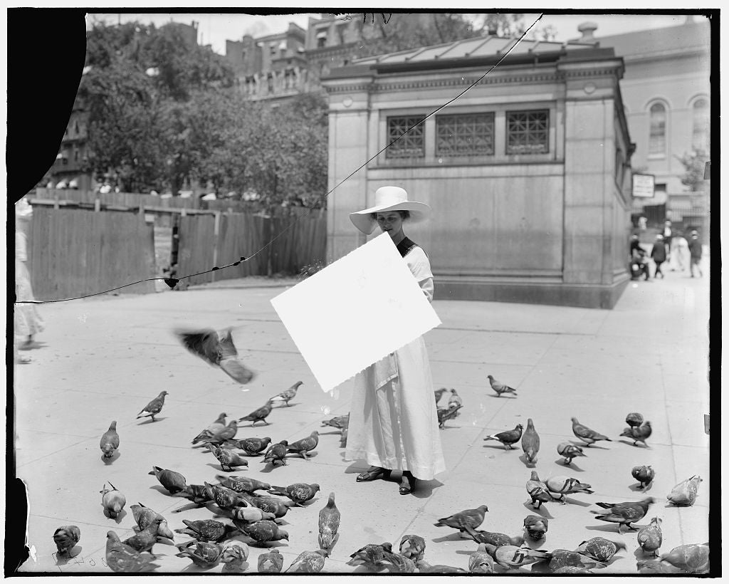 16 x 20 Gallery Wrapped Frame Art Canvas Print of Feeding the pigeons Boston Mass  1910 Detriot Publishing co.  06a