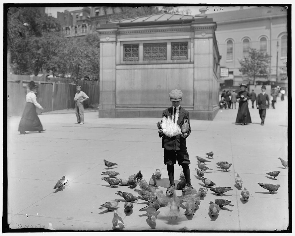 16 x 20 Gallery Wrapped Frame Art Canvas Print of Feeding the pigeons Boston Common Boston Mass  1910 Detriot Publishing co.  31a