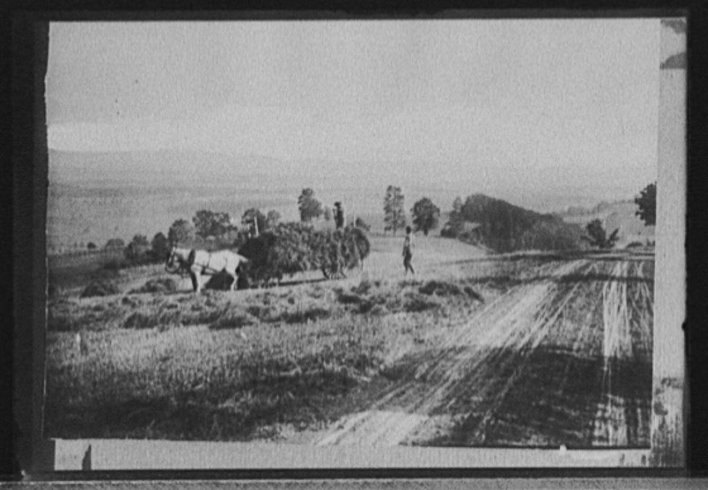 16 x 20 Gallery Wrapped Frame Art Canvas Print of Road and hay cart possibly Colorado 1920 Detriot Publishing co.  22a