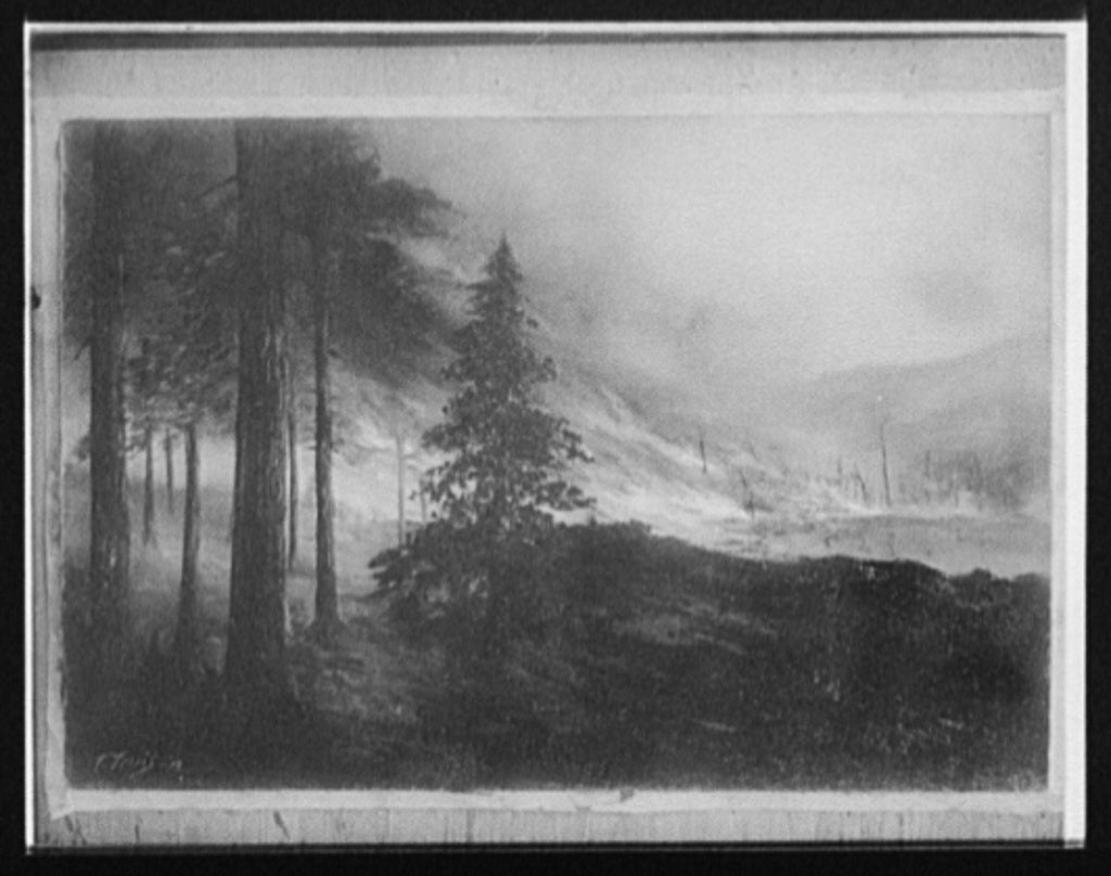 16 x 20 Gallery Wrapped Frame Art Canvas Print of Forest fire 1912 Detriot Publishing co.  02a
