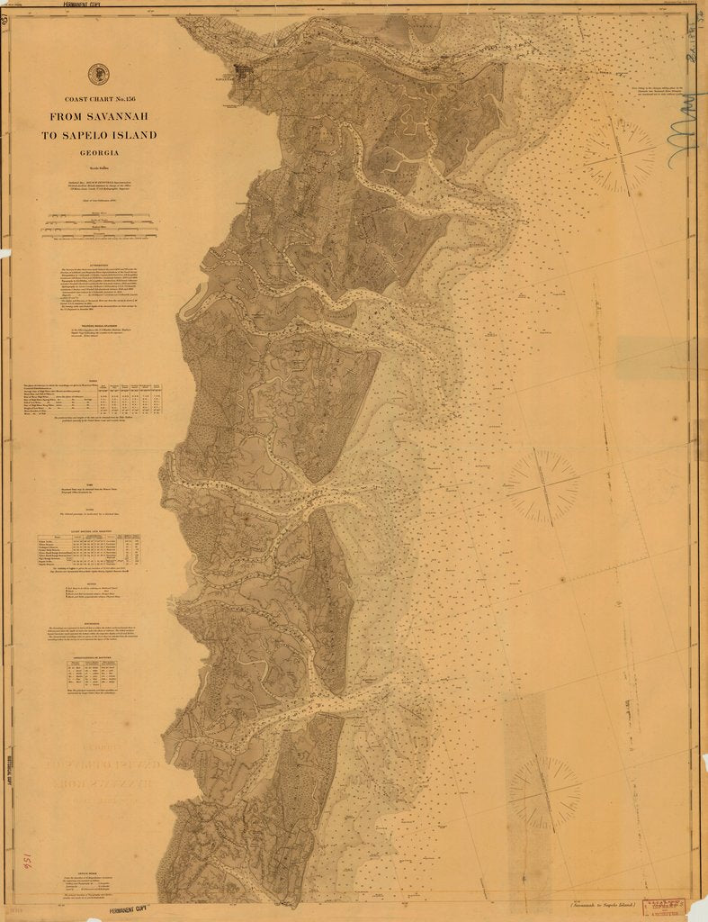 18 x 24 inch 1895 US old nautical map drawing chart of FROM SAVANNAH TO SAPELO ISLAND From  U.S. Coast Survey x591
