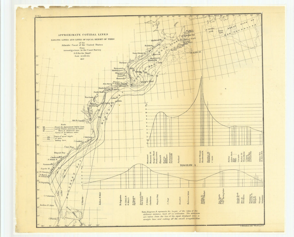 18 x 24 inch 1857 North Carolina old nautical map drawing chart of Approximate Cotidal Lines Sailing Lines and Lines of Equal Height of Tides of the Atlantic Coast of the United States from Investigations in the Coast Survey From  U.S. Coast Survey x9420
