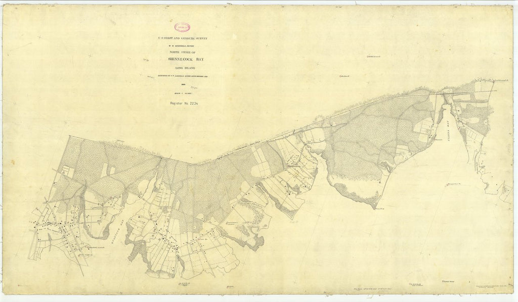 18 x 24 inch 1895 New York old nautical map drawing chart of North Shore of Shinecock Bay Long Island From  US Coast & Geodetic Survey x6865
