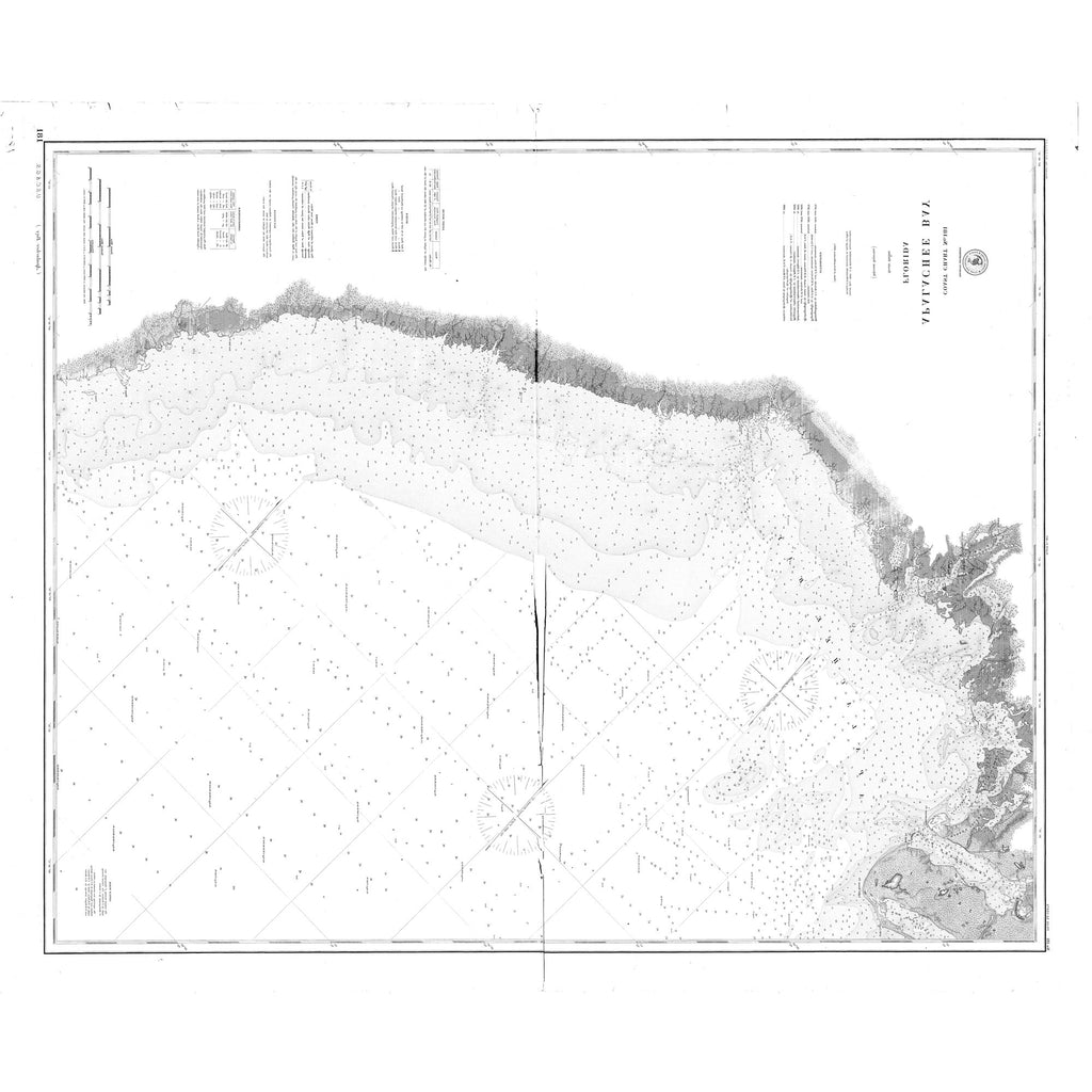 18 x 24 inch 1889 US old nautical map drawing chart of Apalachee Bay From  US Coast & Geodetic Survey x2446