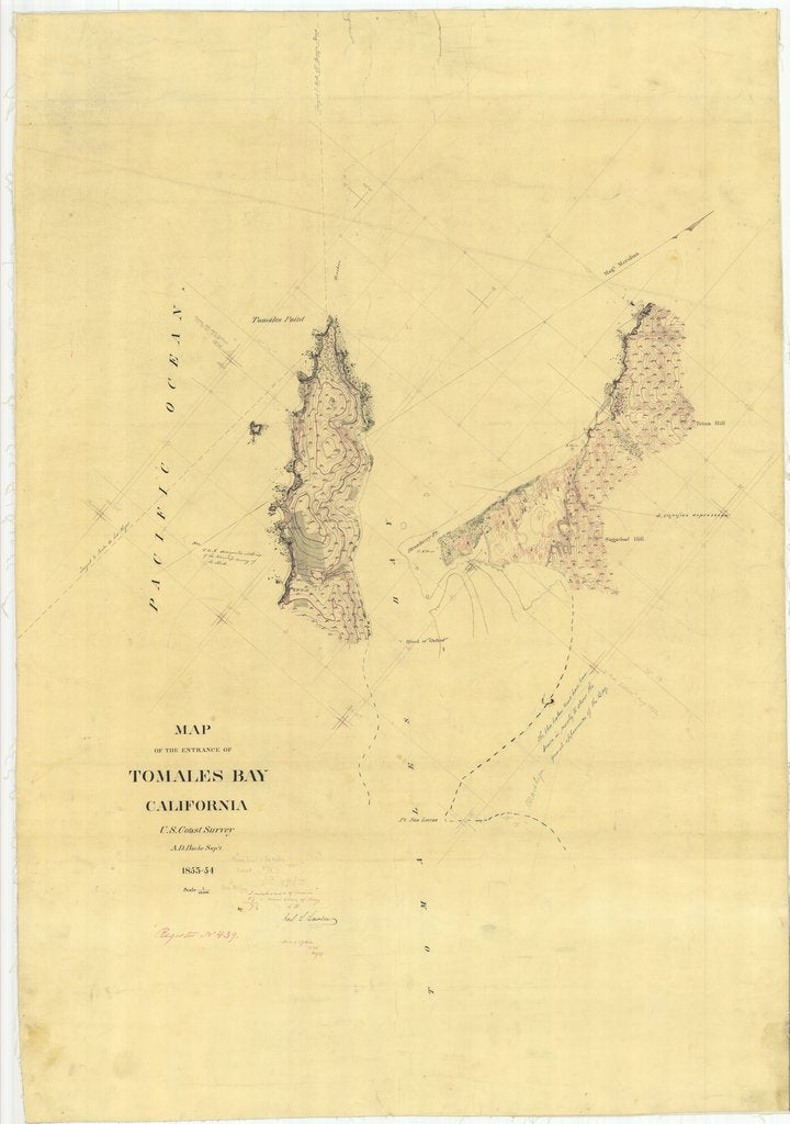 18 x 24 inch 1854 US old nautical map drawing chart of Map of the Entrance of Tomales Bay From  U.S. Coast Survey x1654