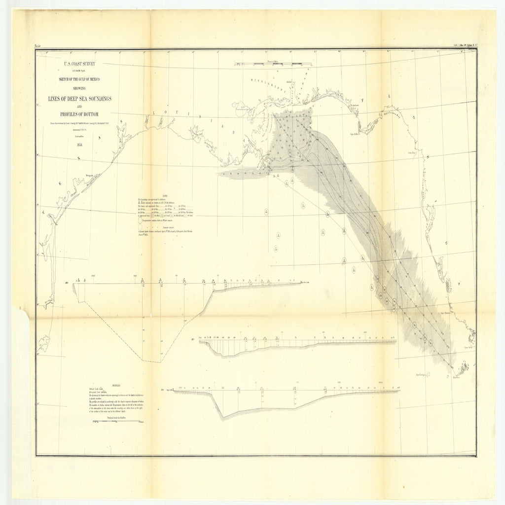 18 x 24 inch 1856 US old nautical map drawing chart of Sketch of the Gulf of Mexico Showing Lines of Deep Sea Soundings and Profiles of Bottom From  US Coast & Geodetic Survey x5586