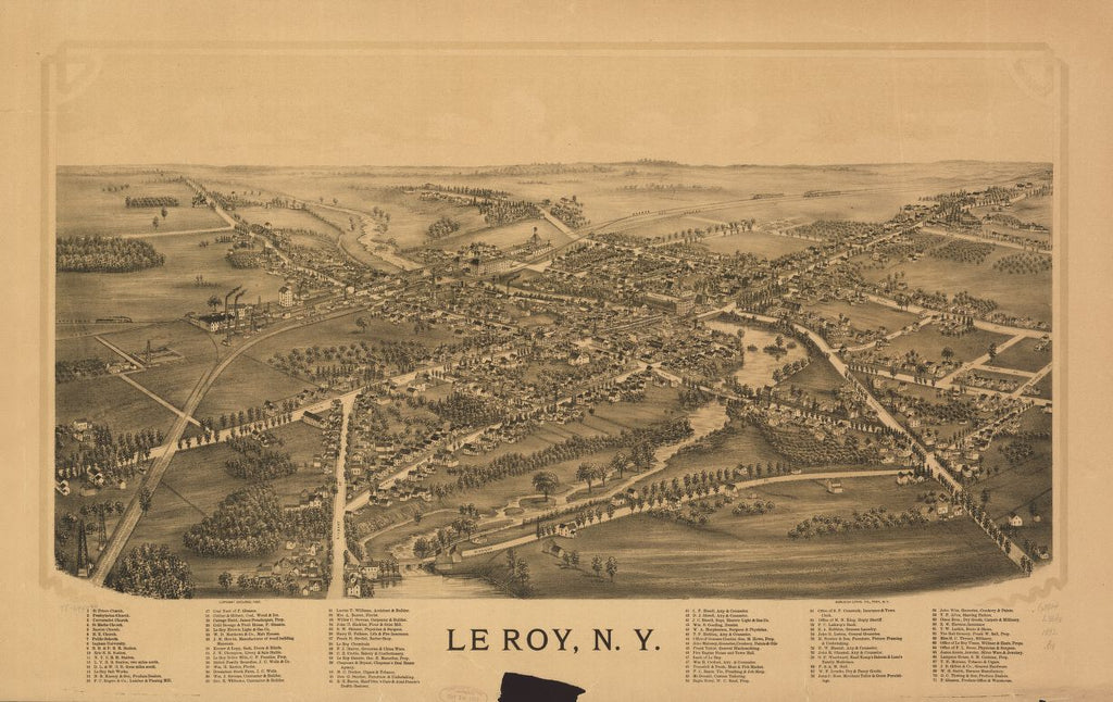8 x 12 Reproduced Photo of Vintage Old Perspective Birds Eye View Map or Drawing of: Le Roy, N.Y. Burleigh Litho 1892