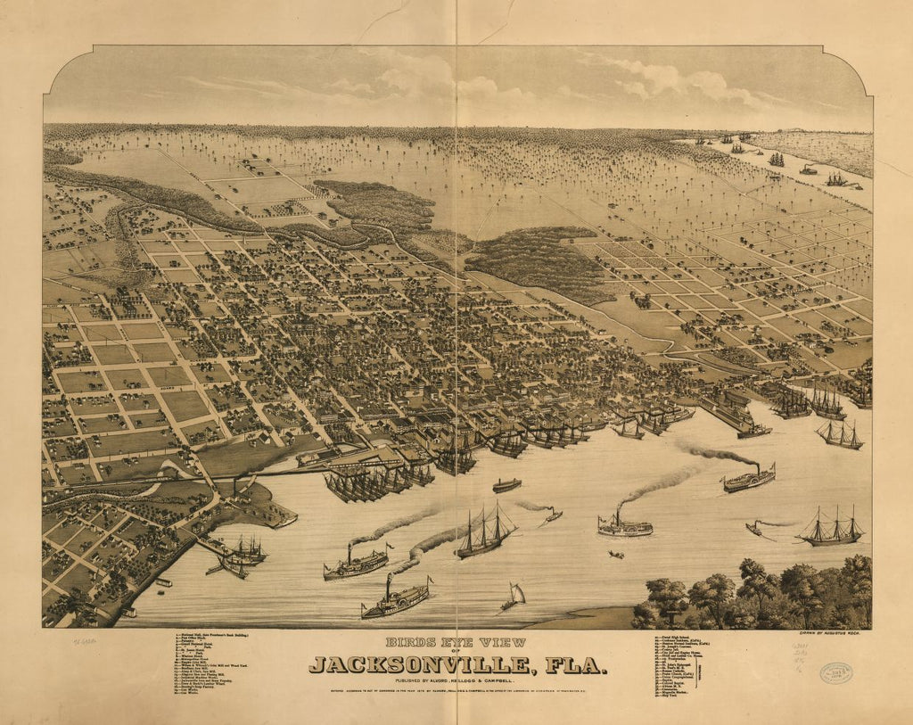 8 x 12 Reproduced Photo of Vintage Old Perspective Birds Eye View Map or Drawing of: Jacksonville, Fla. Koch, Augustus, 1840-Alvord, Kellogg & Campbell. 1876