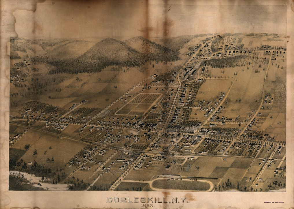 8 x 12 Reproduced Photo of Vintage Old Perspective Birds Eye View Map or Drawing of: Cobleskill, N.Y., 1883  J. McGregor & Co. - Dunphy, John J.  1883