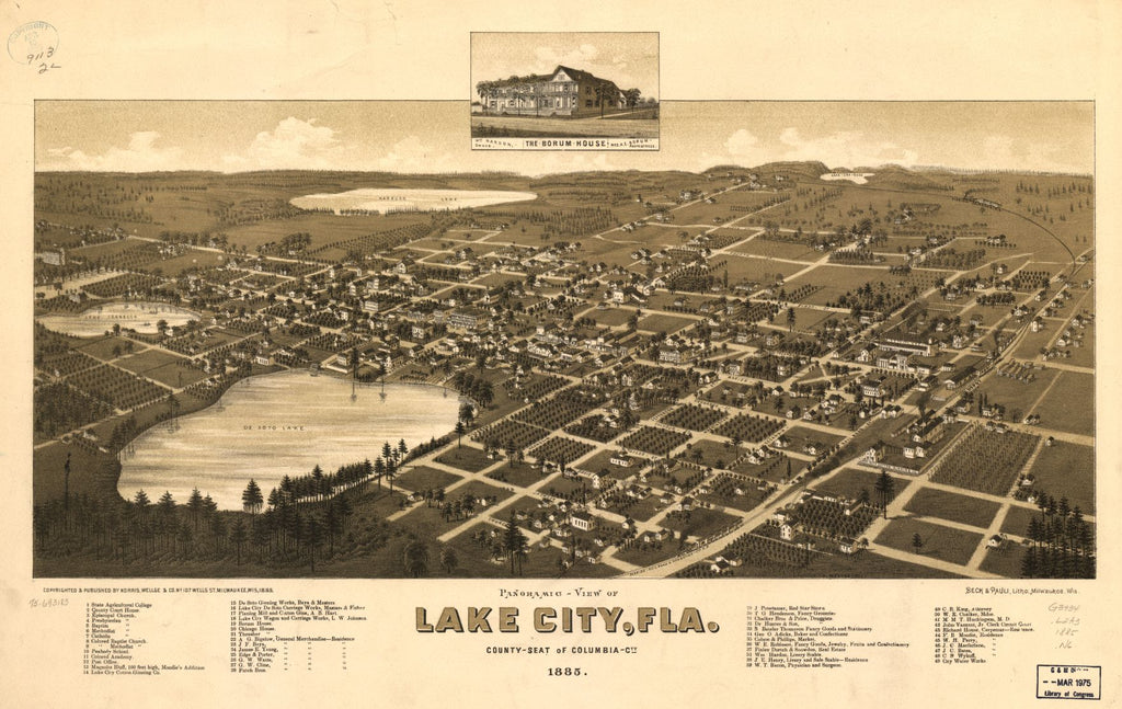 8 x 12 Reproduced Photo of Vintage Old Perspective Birds Eye View Map or Drawing of: Panoramic-Lake City, Fla. county seat of Columbia Cty. 1885. Norris, Wellge & Co.Beck & Pauli. 1885