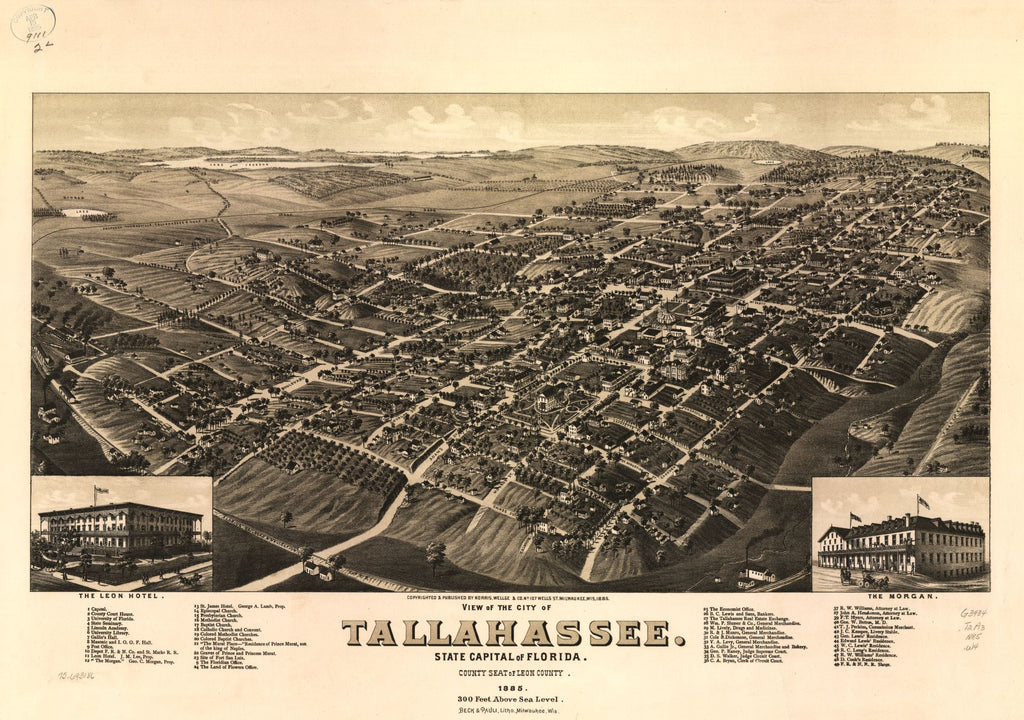 8 x 12 Reproduced Photo of Vintage Old Perspective Birds Eye View Map or Drawing of: Tallahassee. State capital of Florida, county seat of Leon county 1885. Wellge, H. (Henry)Beck & Pauli.Norris, Wellge & Co. c1885.