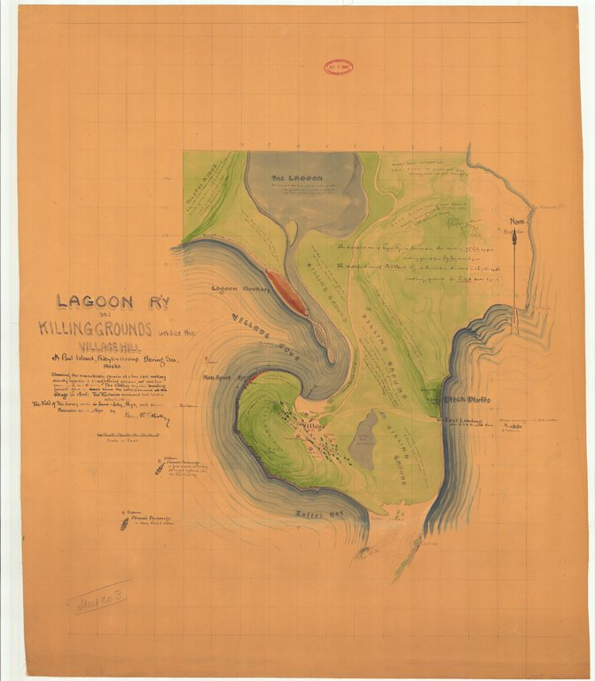 18 x 24 inch 1874 US old nautical map drawing chart of The Original series of Fur Seal Rockery Charts - Lagoon River and Killing Grounds under the Village Hill Sheet No. 3 From  Gerry W. Elliott x17