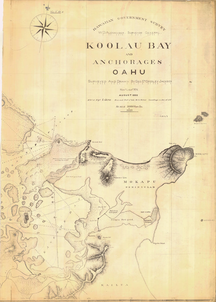 18 x 24 inch 1882 US old nautical map drawing chart of KOOLAU BAY AND ANCHORAGES OAHU From  Hawaiian Government Survey x1201