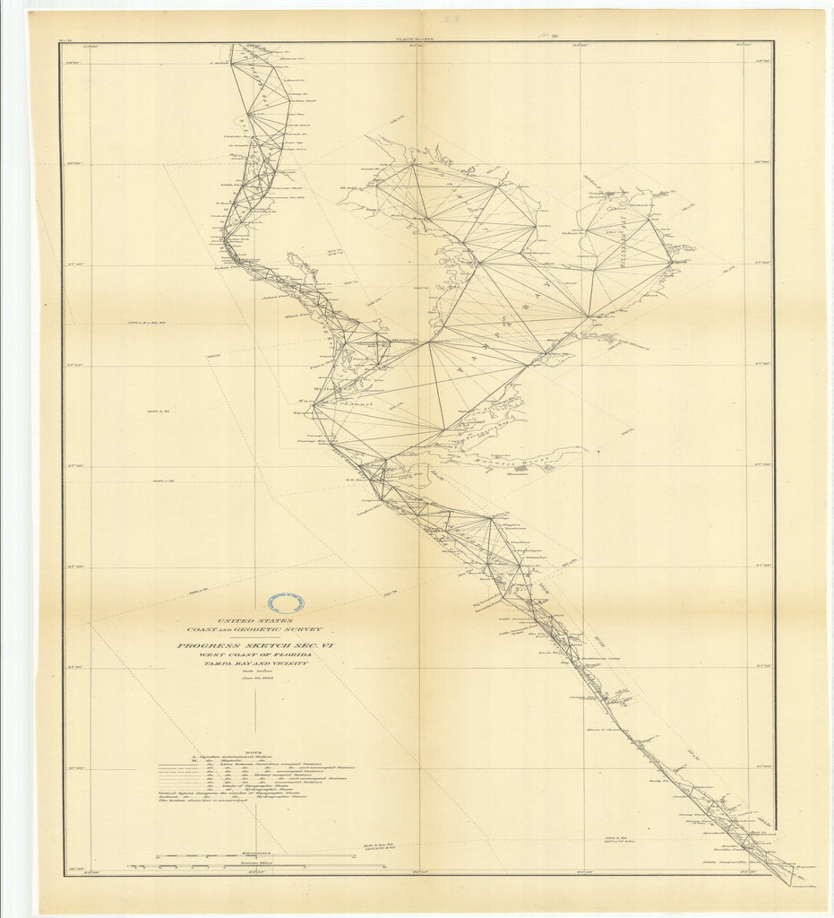 18 x 24 inch 1883 US old nautical map drawing chart of Progress Sketch, Section 6, West Coast of Florida, Tampa Bay and Vicinity From  US Coast & Geodetic Survey x2561