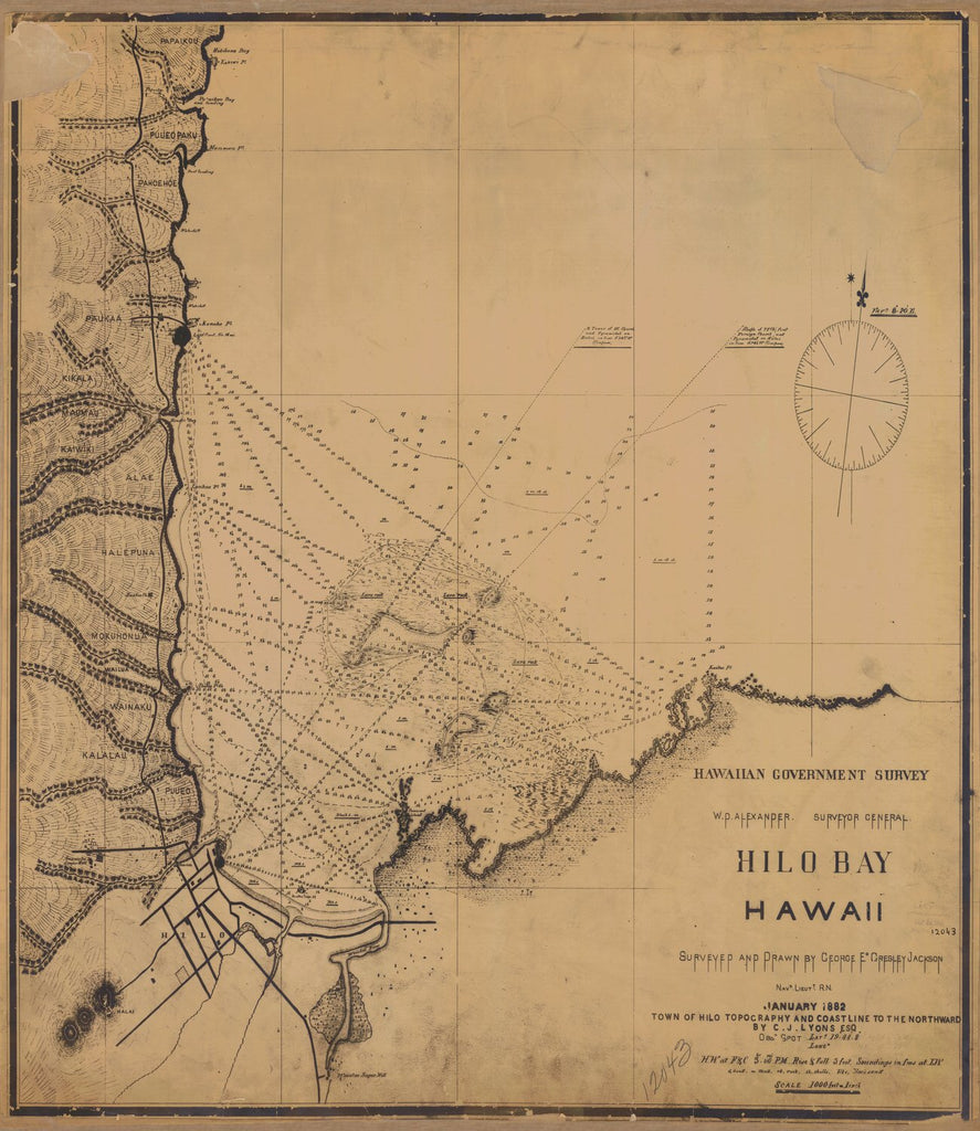 18 x 24 inch 1882 US old nautical map drawing chart of HILO BAY From  US Coast & Geodetic Survey x1186