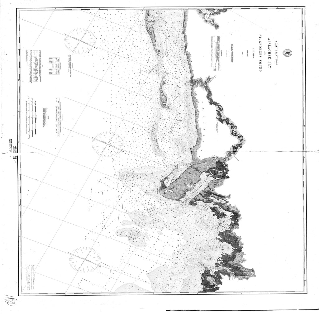 18 x 24 inch 1883 US old nautical map drawing chart of Apalachee Bay From  US Coast & Geodetic Survey x2111