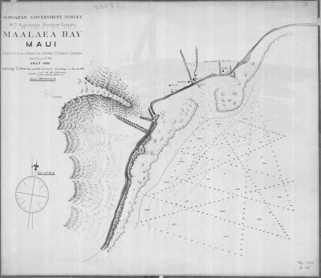 18 x 24 inch 1883 US old nautical map drawing chart of MAALAEA BAY MAUI From  Hawaiian Government Survey x1189