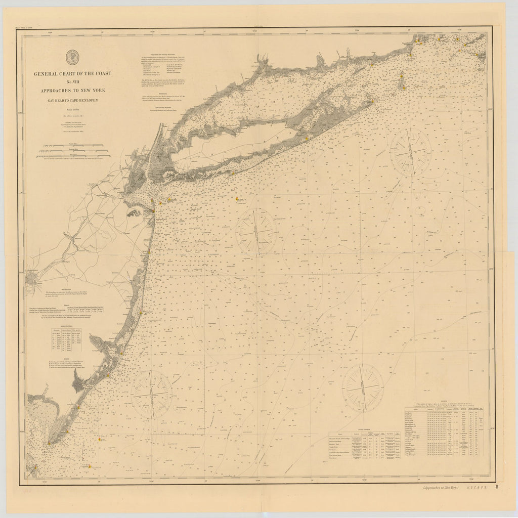 18 x 24 inch 1892 New Jersey old nautical map drawing chart of GENERAL CHART OF THE COAST NO.VIII, APPROACHES TO NEW YORK, GAY HEAD TO CAPE HENLOPEN From  US Coast & Geodetic Survey x7417