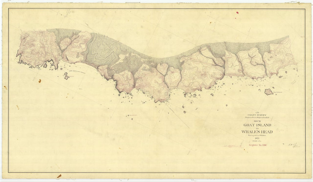 18 x 24 inch 1871 US old nautical map drawing chart of Goat Island to Whale's Head From  U.S. Coast Survey x449