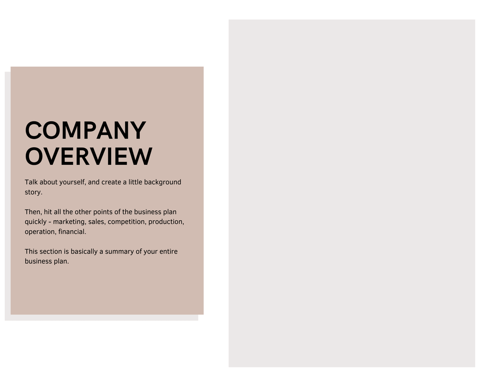 clothing line business plan company overview template