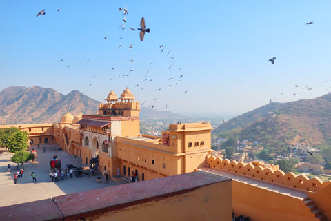 view from inside the amer fort Jaipur, birds flying - photo taken by Melanie DiSalvo