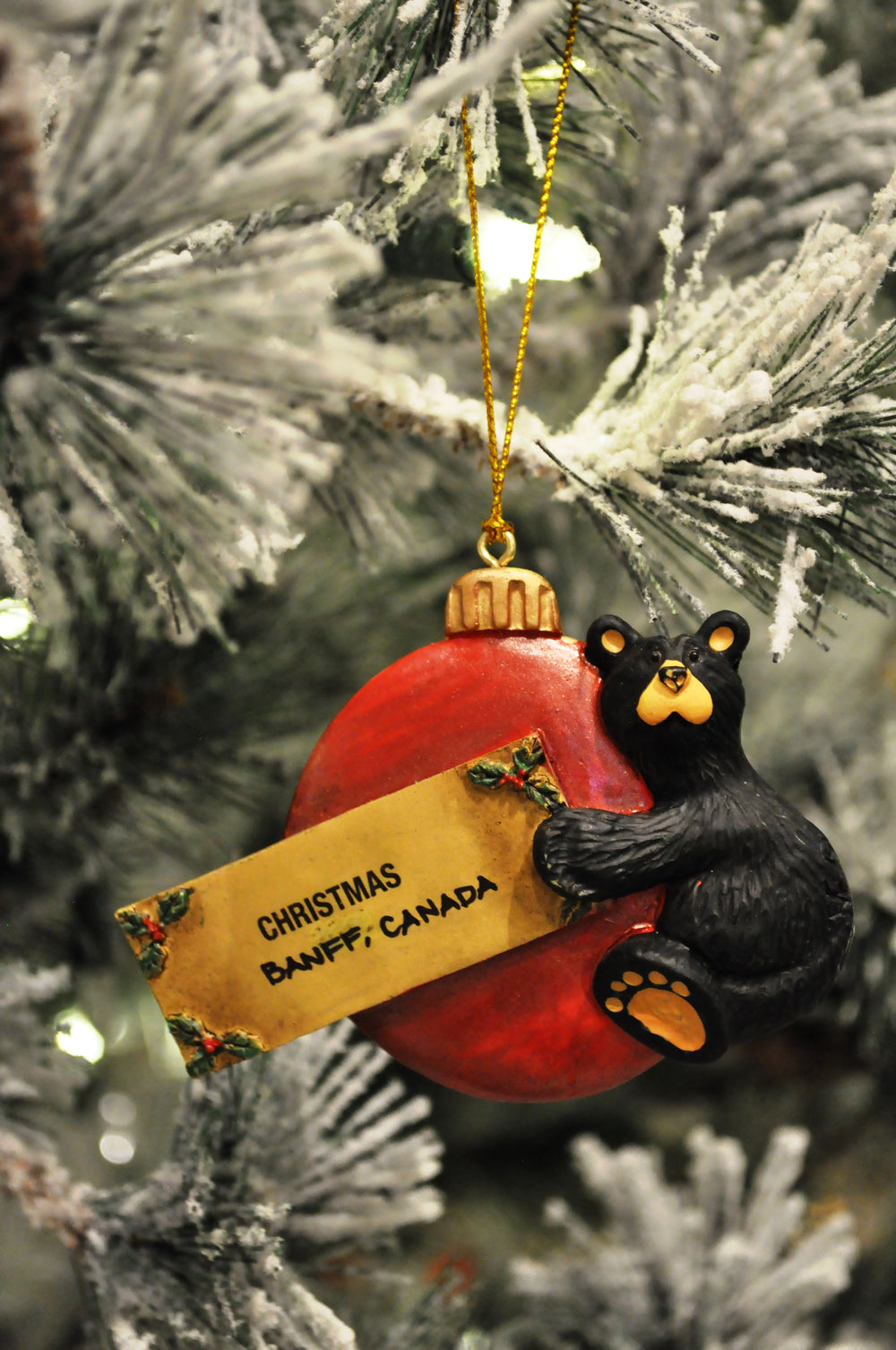 banff bear ornament