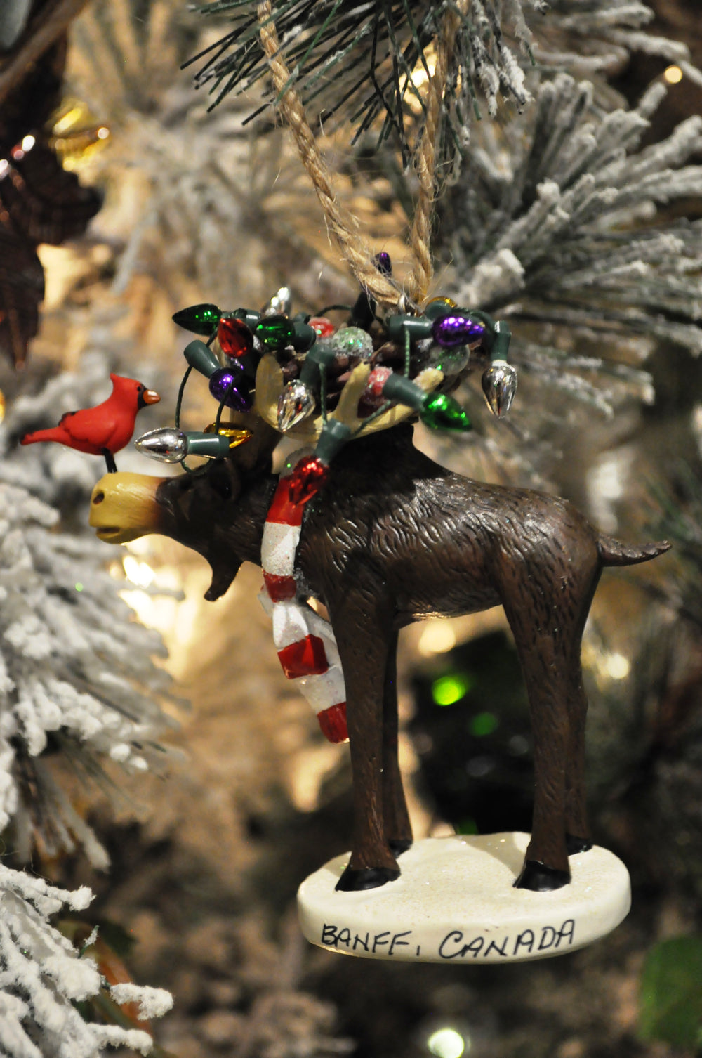moose with lights ornament