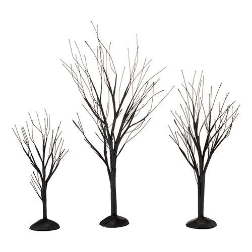 Black Bare Branch Trees