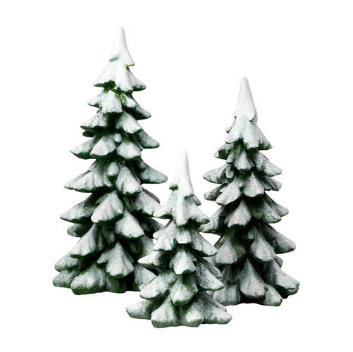 Winter pines department 56