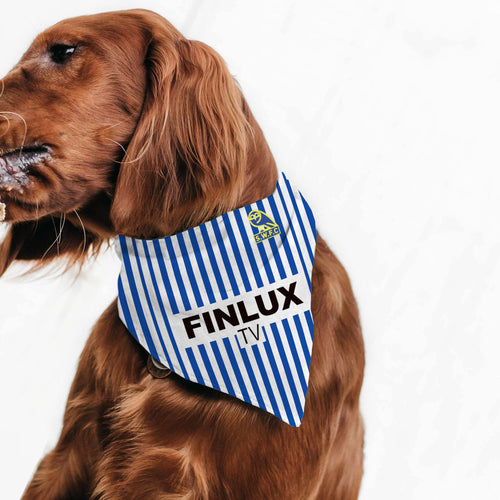 Sheffield Wednesday 1988 Pet Bandana
