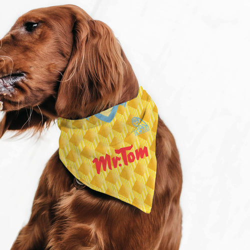 Sheffield Wednesday 1991 Away Pet Bandana