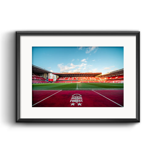 Official Nottingham Forest Pitch Print