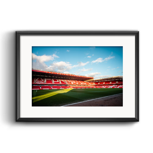 Official Nottingham Forest Pitchside Print
