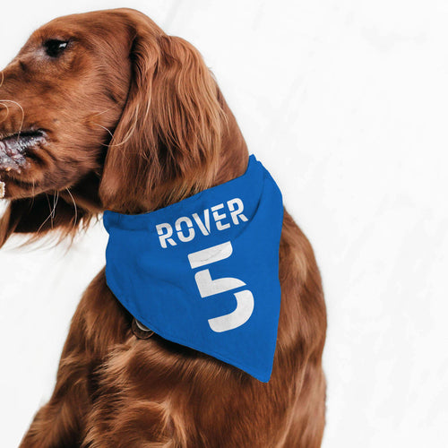 Personalised Kit Pet Bandana