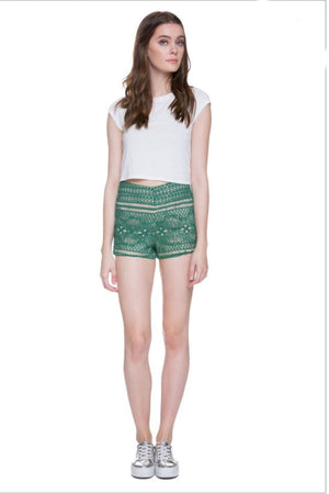 Kelly Petite High Waisted Shorts