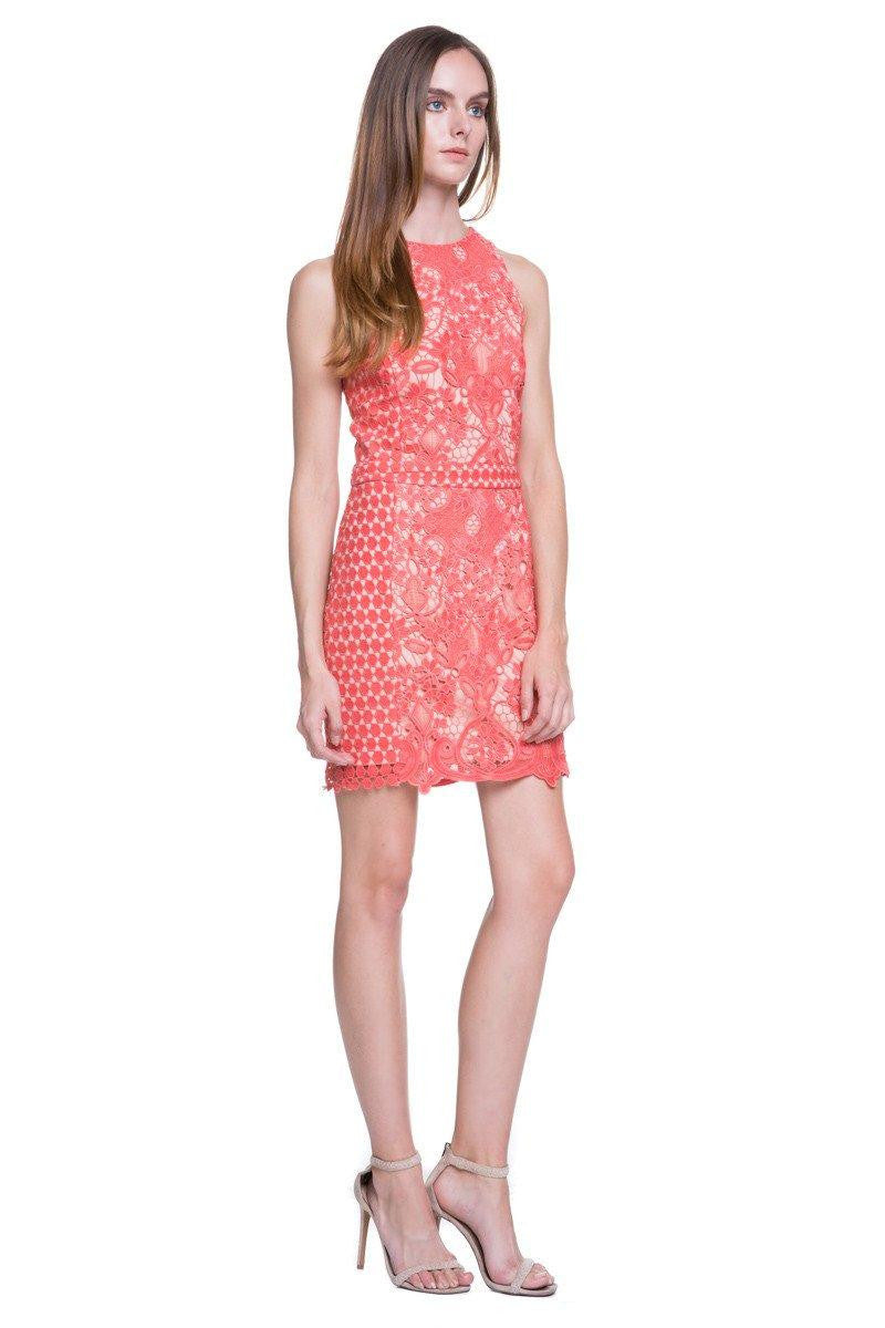 Endless Rose Coral Lace Dress
