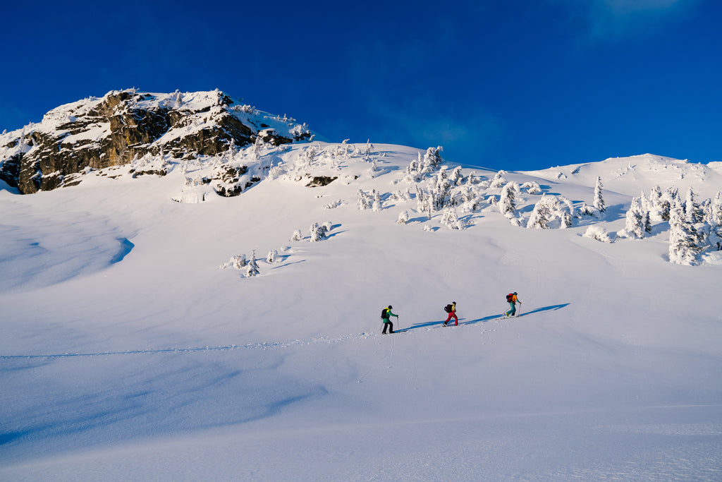 skinning in the backcountry