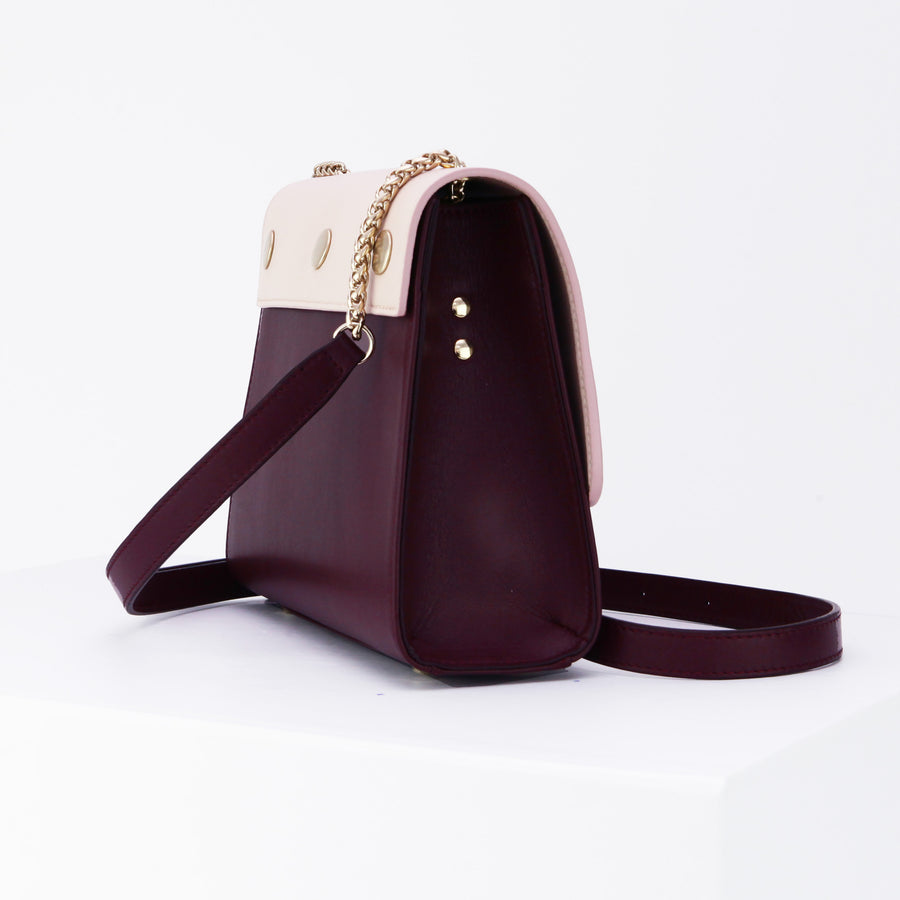 Saint Martin Burgundy and Nude Bag