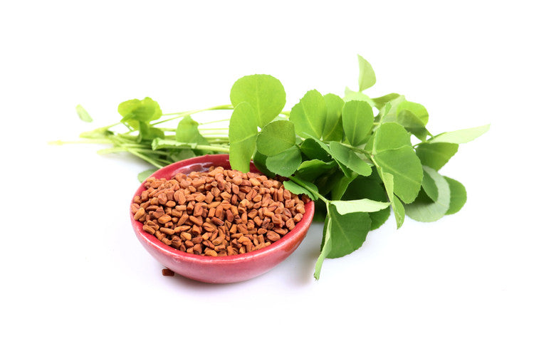 What are fenugreek benefits for breastfeeding and increase of milk supply