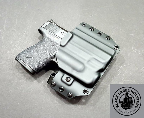 Modular Holster For Sub-Compact Pistols With Streamlight TLR-6 Outside The Waistband OWB Glock 43 S&W Shield 9/40