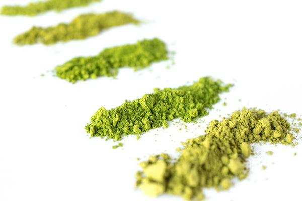 Five different grades of matcha green tea powder in varied shades of green