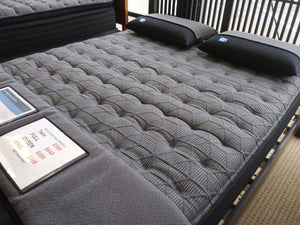 Sealy Mattress Sealy Beech Street Plush Queen